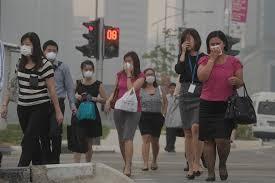 Sing smog 2