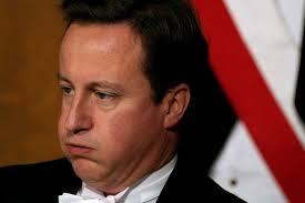 Cameron puffy